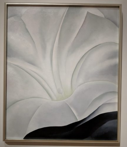 Georgia O'Keeffe Exhibit in Cleveland