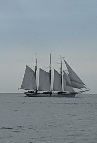 Tall Ships Festival in Cleveland